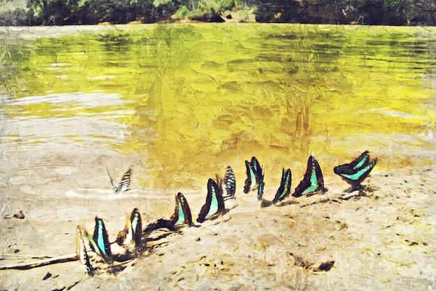 川の近くを蝶します。写真家によるデジタルアートインパスト油絵