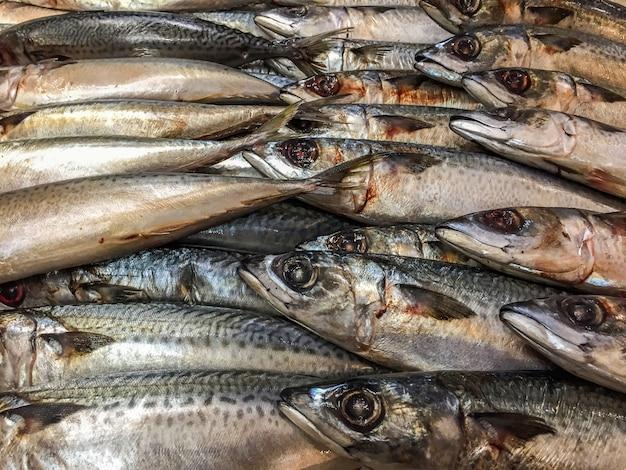 市場の屋台で氷の上で死んだ魚のクローズアップ。