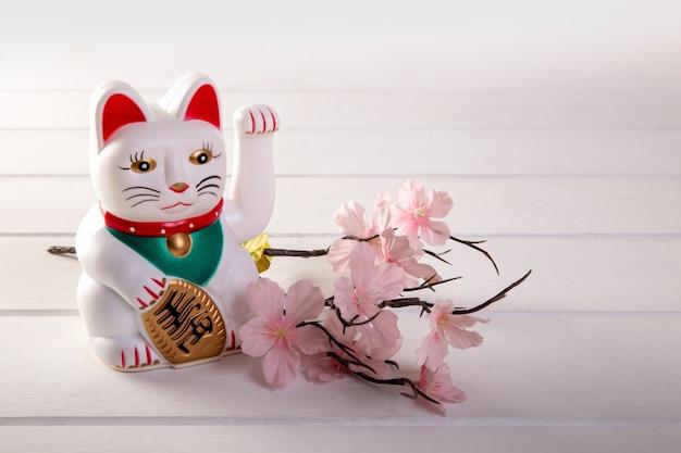 白い背景にラッキーな猫