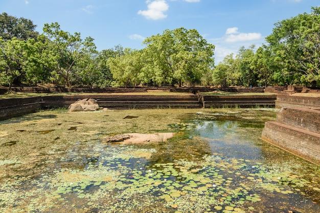 シギリヤまたはシンハギリ(ライオンロックシンハラ語)は、スリランカ中部のダンブッラの町の近くの北部マタレー地区にある古代の岩の要塞です。
