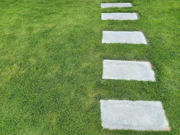 庭の小道、芝生の飛び石、成功への道、マイルストーンのコンセプト。