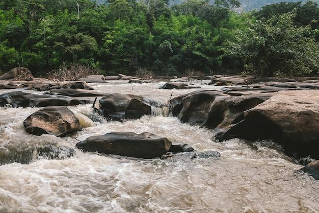 自然の木、滝、岩。