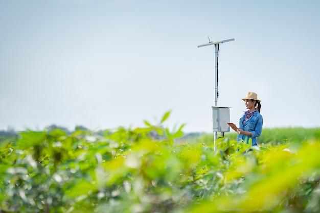 農家は肥料を提供する技術を使用してタブレットで農業を計画しています。