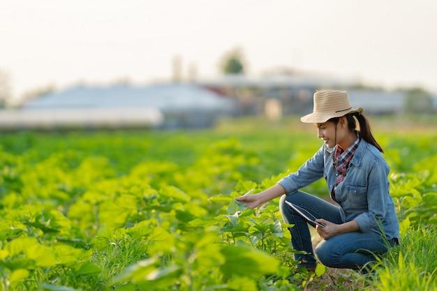 農家は、タブレットで農業を計画しています。