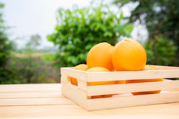Апельсины мандарина помещены в деревянный ящик на столе. фрукты богаты витамином с, помогают поддерживать здоровье глаз и предотвращают катаракту.