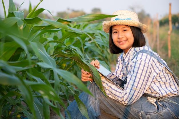 Маленькая девочка расслабиться и увидеть отслеживания продукта в кукурузном поле. кукурузные продукты используются для производства продуктов питания для людей и животных. концепция сельского хозяйства.