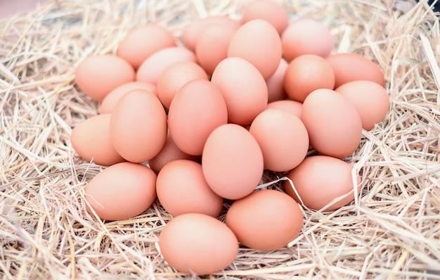 わらを持つ地元の農場で良質の鶏卵。フレッシュ、調理に適しています