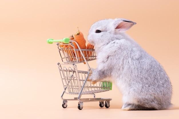 ピンクのバラの分離の背景を持つショッピングカートにニンジンを食べる小さなウサギ