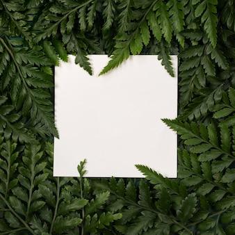 Рамка из зеленых листьев с бумажным макетом. летний тропический фон.