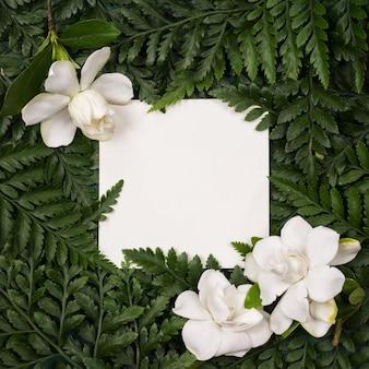 Рамка из белых цветов и зеленых листьев с бумажным макетом