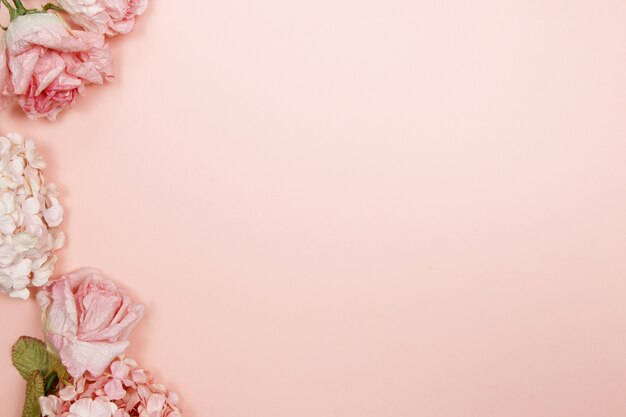 Рамка из розовых и бежевых роз, гортензия на розовом фоне. квартира, вид сверху.