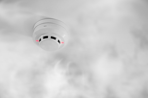 天井に煙探知機
