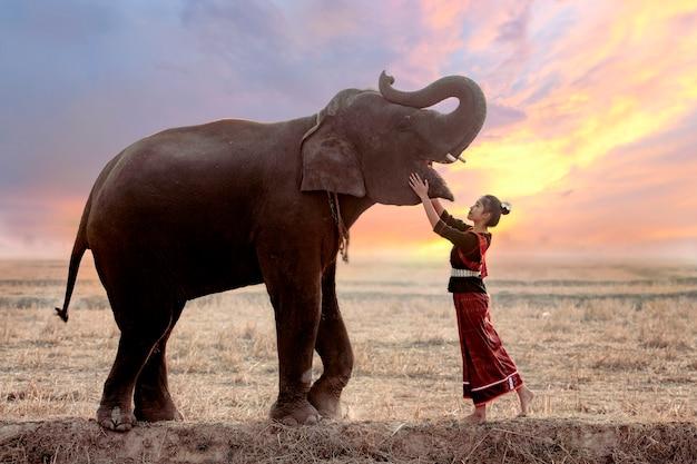 伝統的な民族衣装のタイの少女の肖像画田んぼで象と遊んで。