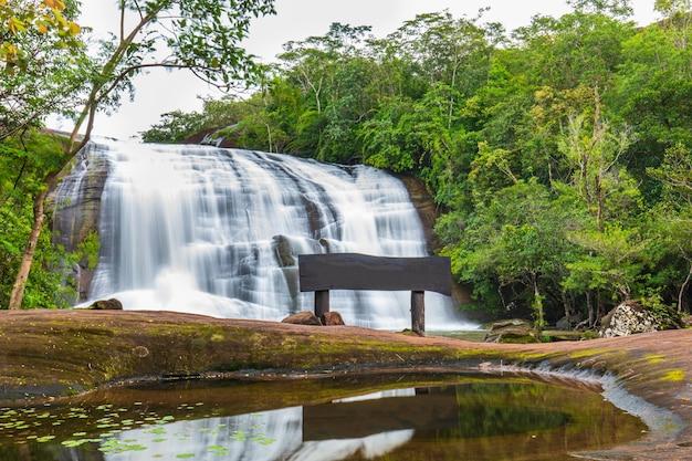 自然の中で美しい滝