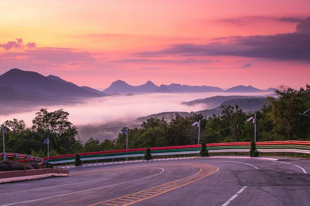 朝の美しい道