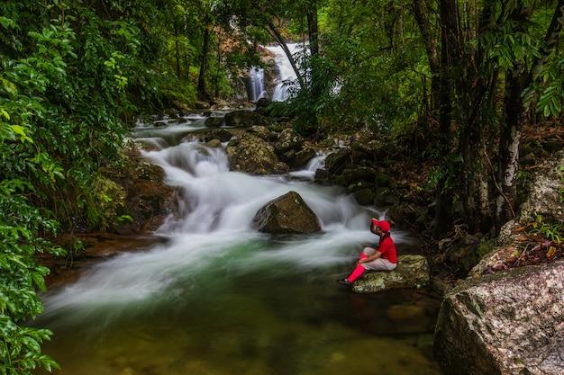 Пейзаж водопада в лесу