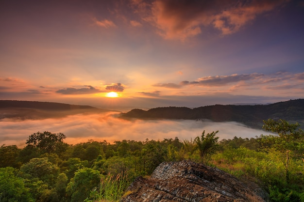 Пейзаж моря тумана над горами