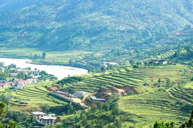 ブータン、プナカの美しいテラスライスフィールド