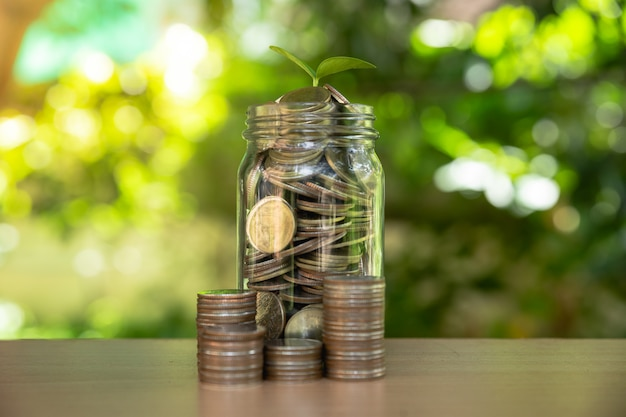 お金の成長お金を節約します。