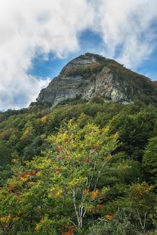 スペイン、カタルーニャの秋のシーズン中の濃い色の森の後の雲の下の高峰の山