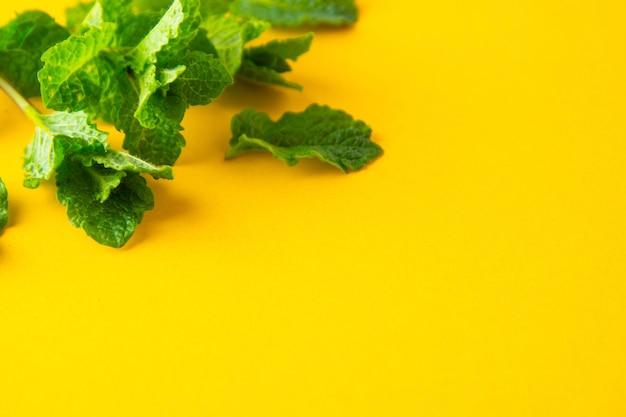 黄色の背景に緑色のミントの葉。夏のカクテルドリンクの材料。