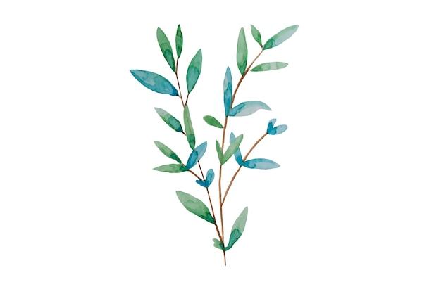 手描きの葉、水彩イラスト。緑と青の春、イースター植物要素。