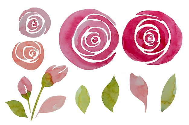 Розовые розы и листья акварели установили, иллюстрация. элегантные цветы с ручной росписью.