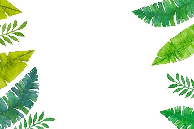 Акварель, рисованной зеленые тропические листья на белом фоне.