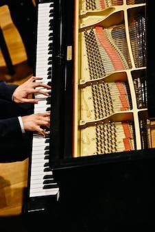 上からピアニストとピアノ。
