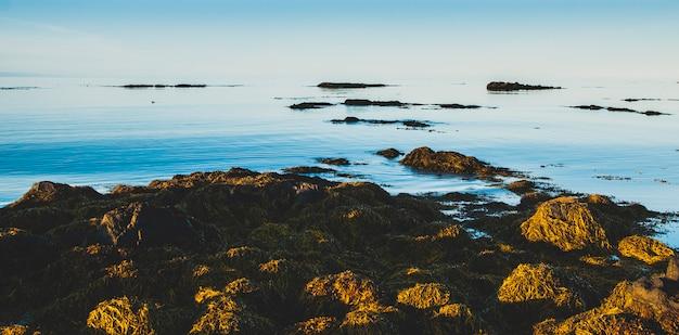 リラックスした休暇を探している人のための穏やかな海景の静寂なイメージ。