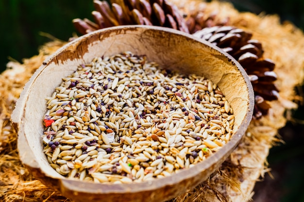 鳥を引き付けるための種子を備えた自家製の鳥の餌箱。
