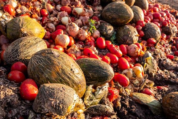 腐った果物と野菜