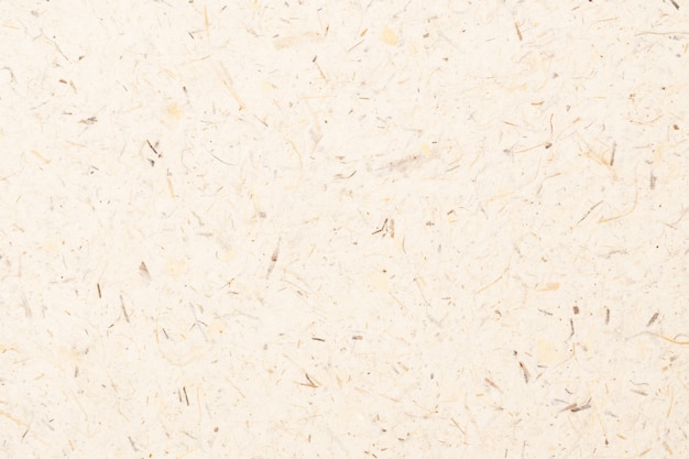 桑紙の表面
