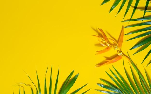 黄色の背景にヤシの木とヘリコニアの花の緑の葉。