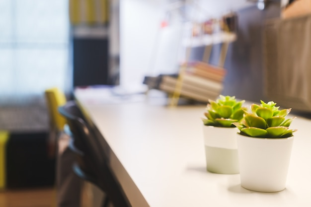 作業テーブルの上の小さな緑の葉の植木鉢