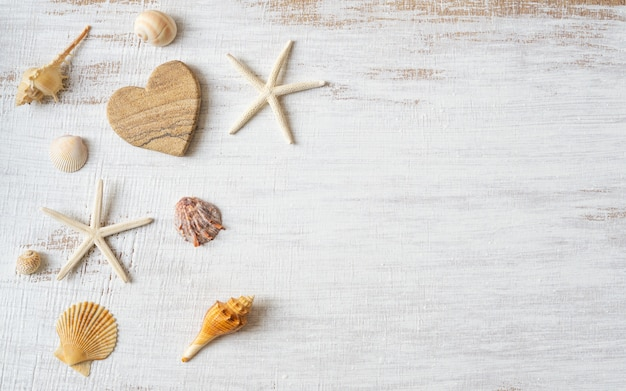 海の貝殻やグランジの白い木製の背景にヒトデのフラットレイアウト。