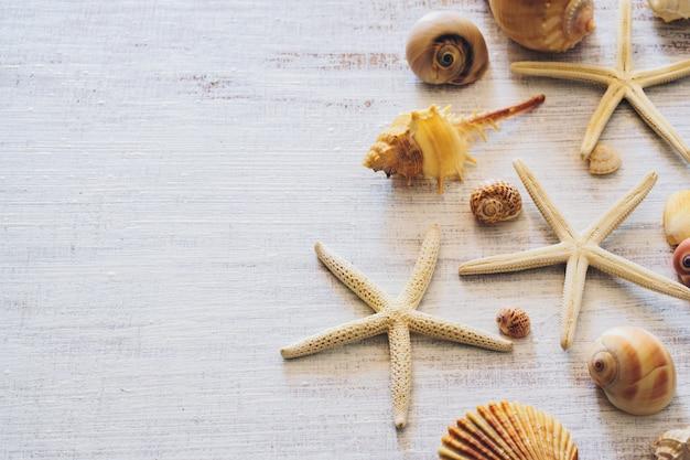 グランジの白い木製の背景に海の貝殻とヒトデの平面図です。
