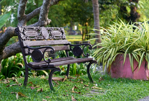 Стул или скамейка в парке или саду с прохладной атмосферой