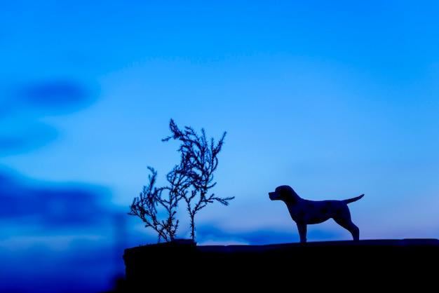 夕日の背景に犬のシルエット。