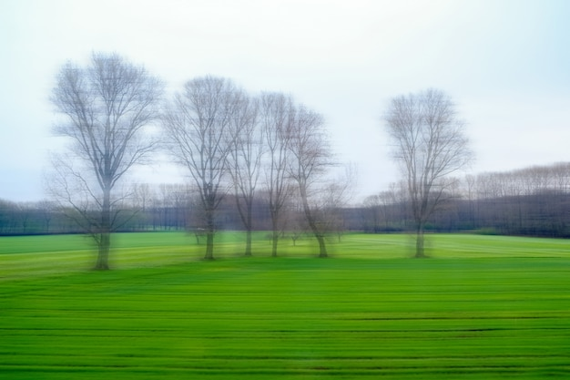 乗馬列車の窓からぼやけて美しい自然の景色。