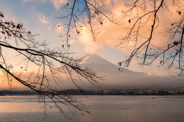 朝の枝を持つ富士山の日の出