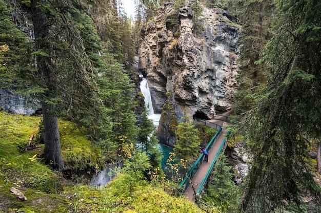 バンフ国立公園の秋の森のハイキングトレイルとジョンストンキャニオンの滝