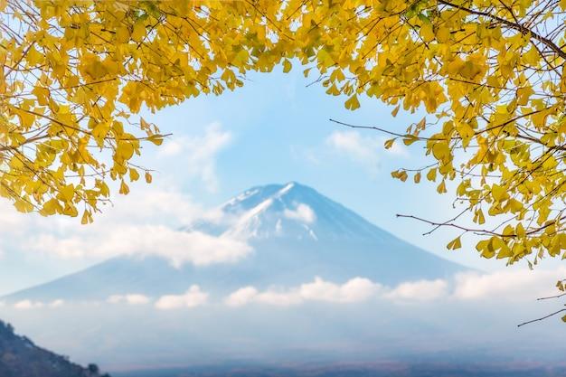 川口湖で朝の黄色い葉イチョウと富士山