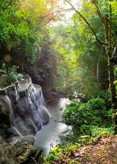 滝の風光明媚な自然の日光の朝