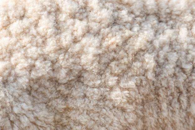 ウールの柔らかい羊の表面をクローズアップ