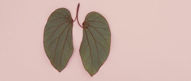 Листья в форме легких