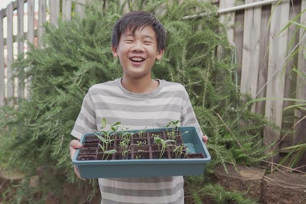 苗トレイ、菜園、楽しい野外活動、持続可能な生活、社会的距離の概念を保持している幸せな混合アジアプレティーンの少年
