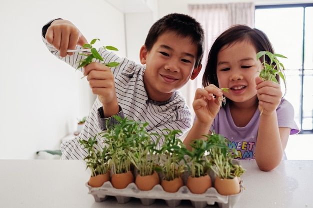 卵殻で苗を保持している混合アジアの子供たち