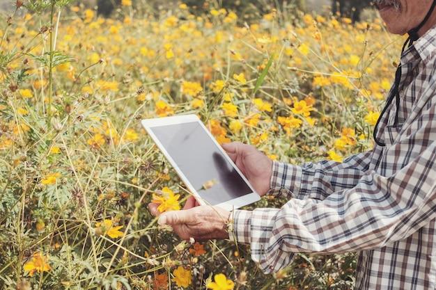 Мужской азиатский фермер используя цифровую таблетку в цветочной ферме
