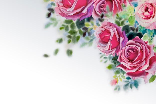 明るいピンクのバラ